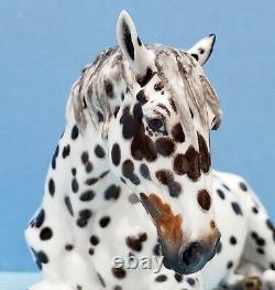 Horsing Around Eberl CINDI Appaloosa Mare 41/50 Mint Fine Bone China Horse