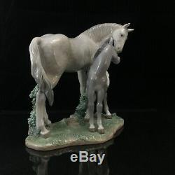 Lladro First Steps On The Prairie Porcelain Figurine Horse Mare Foal #6873, MINT