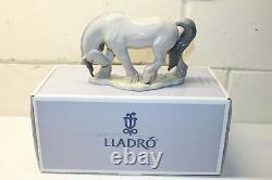 Lladro Retired 01008109 HORSE II in Box #8109