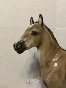 Vintage Rosenthal Porcelain 10 Horse/colt Figurine Albert Hinrich Hussmann